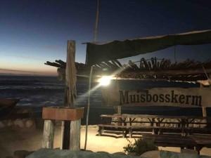 SA Seaside