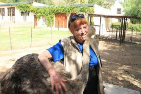 PH Paula w ostrich small